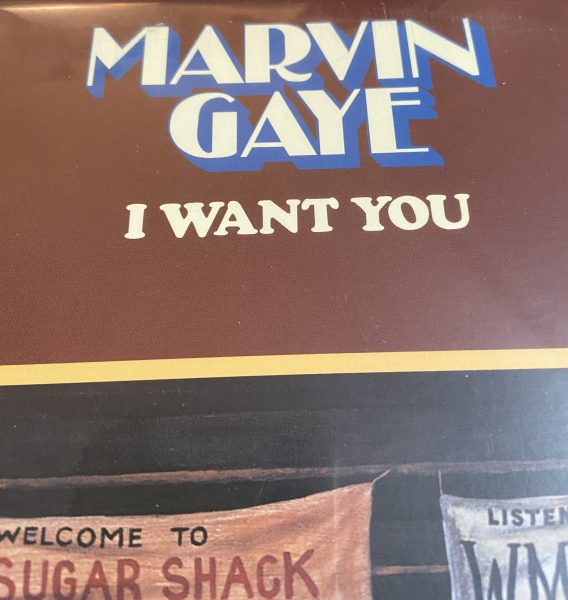 I Want You (1976) by Marvin Gaye